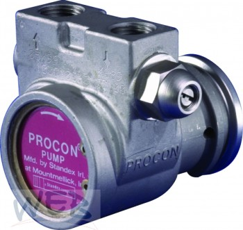 Procon-Edelstahl-Pumpe 113C100BE16C+Plastikkupplung 300 l/h